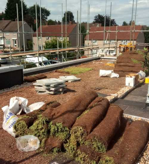 green roofing services tunbridge wells roofing